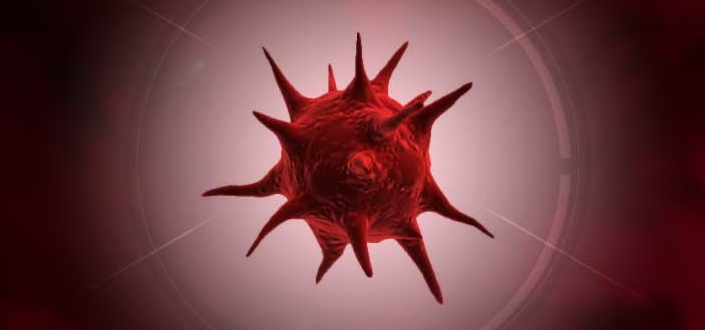 plague inc fungus - What is Plague, Inc. Fungus?