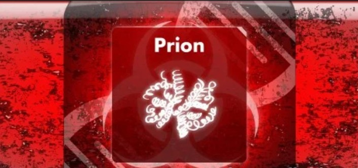 How to beat the plague inc prion_ 9 Steps