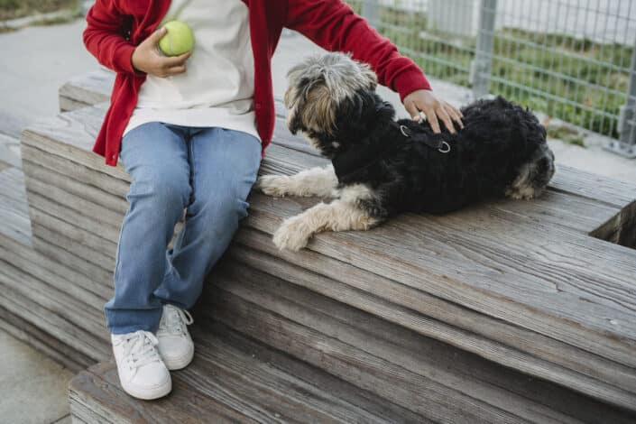 a person petting a dog while holding a tennis ball