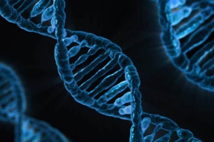 microscopic illustration of human DNA