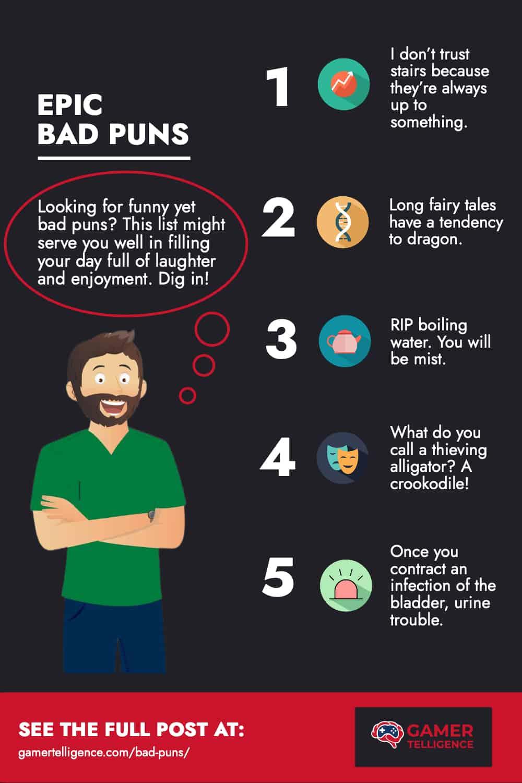 Bad Puns - Infographic